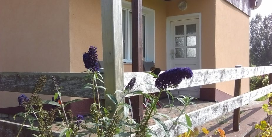 Eingang und überdachte Terrasse Ferienhaus Ehrauberge